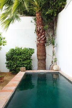 Cortijo Hindú - AD España, © Ricardo Labougle Un pintor británico y su esposa han plasmado en su casa de Carmona su pasión por la cultura hindú. El pequeño jardín exterior está presidido por una alberca rústica rodeada de palmeras. Realización: Pete Bermejo.