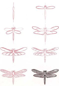 how to draw a dragonfly #journal