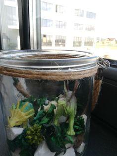 întrecoperți Classroom Decor, Aquarium, Goldfish Bowl, Aquarium Fish Tank, Aquarius, Fish Tank