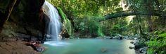 Serenity   Serenity Falls, Buderim, Queensland