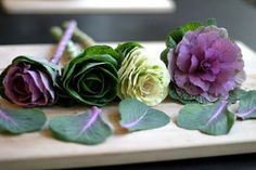 ornamental cabbages3