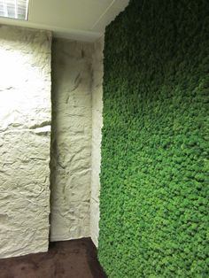 An installation by ourselves of natural moss wall with rock affect panels to create the outdoors inside an office environment.
