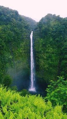 Beautiful Photos Of Nature, Beautiful Nature Wallpaper, Beautiful Places To Travel, Amazing Nature, Beautiful Landscapes, Beautiful Days, Beautiful Landscape Photography, Amazing Places, Natural Waterfalls