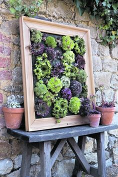 DIY Sukkulenten Wand Pflanzer Turn succulents into living wall art with this picture frame projects. Sempervivums, also known as hens and chicks, are the perfect drought-tolerant choice for this creative gardening project. This tutorial is an excerpt from Succulent Wall Planter, Succulent Frame, Succulents Garden, Vertical Planter, Succulent Gardening, Vertical Succulent Gardens, Succulent Garden Ideas, Succulent Display, Herb Garden Design
