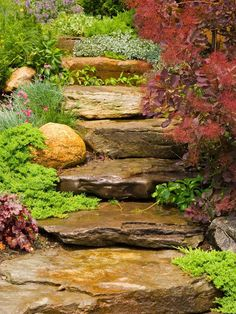 Boulder Pathway    A change in grade allows for the introduction of boulder steppers that leads you up the garden path. Flanked with spreading color and texture, the boulders appear nestled amongst the plantings and are softened.