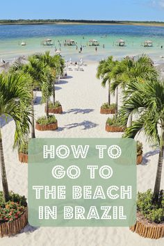 Understanding Brazilian Beach Culture