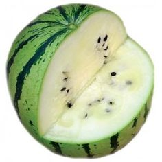 Cream of Saskatchewan Watermelon    80 days. A beautiful little melon with sweet, tasty, cream-colored flesh! An excellent variety for the north. Fruits around 8-10 lbs each with a striped, green rind. A favorite of those who grow it! An old heirloom.