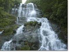 Spectacular scenery and hiking trails make Amicalola Falls one of Georgia's most popular state parks. At 729 feet, Amicalola Falls is the tallest cascade in the Southeast.