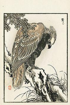from Japanese woodblock prints of cranes, eagles, egret, heron Japanese Art Prints, Japanese Drawings, Bird Drawings, Japanese Painting, Japanese Bird, Samurai Artwork, Hokusai, Japanese Illustration, Korean Art