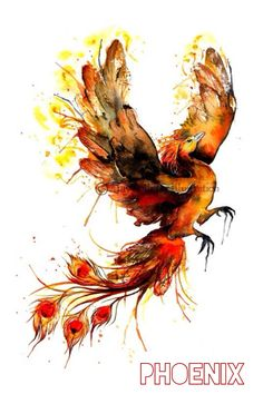 TODAYS CARE OF MAGICAL CREATURES LESSON: THE PHOENIX The Phoenix is a long-lived bird that is cyclically regenerated or reborn. In most myths, (Professor Dumbledore would agree) the Phoenix rises from the ashes of it's predecessor.
