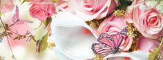Background Facebook Cover, Facebook Cover Photos Vintage, Fb Background, Funny Facebook Cover, Facebook Cover Template, Facebook Cover Images, Spring Cover Photos, Fb Cover Photos, Cover Photo Quotes