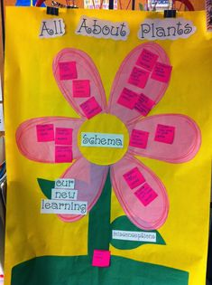 Next month is June! I am so excited for June! Here is a little look into some of our spring time activities. In April we spent some time le. All About Plants, Time Activities, Welcome, Spring Time, Kindergarten, Teaching, Flowers, June, Science Ideas