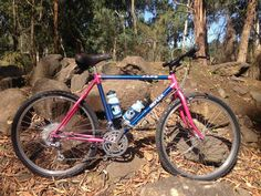 1988 Reflex ALX 99, recent purchase and refurbishment from commuter to mountain bike.
