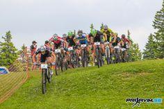 Roglo je na dan državnosti zavzelo 260 kolesarjev iz 10-ih držav, ki so se pomerili na mednarodni dirki v olimpijskem krosu (UCI C2).