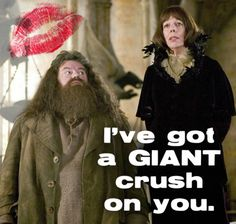 This might be my favorite Harry Potter Valentine so far!