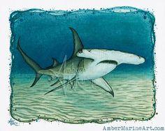 """Great Hammerhead Shark"" by Amber Marine ~ Watercolor Painting, (Copyright Duvet Cover by aroseart Fish Drawings, Animal Drawings, Watercolor Print, Watercolor Paintings, Shark Painting, Shark Drawing, Hammerhead Shark, Fish Art, Illustrations"