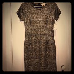 NWT Gold Party Dress Your go to little black dress just got some competition with this adorable gold and black dress. Perfect for girls night out or dinner with the boyfriend. Smoke free home. Collective Concepts Dresses Midi