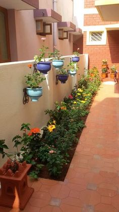 40 Front Yard Side Yard and Backyard Landscaping Ideas - Indignant corgi Small Balcony Garden, Indoor Garden, Indoor Outdoor, Outdoor Living, Narrow Garden, Balcony Plants, Outdoor Rooms, Side Yard Landscaping, Landscaping Ideas