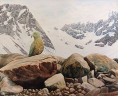 New Zealand Kea (Mountain Parrot) in Southern Alps. Painted in oil on panel. Fine art giclee prints available.
