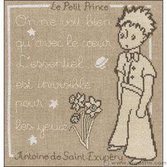 Broderie Point de Croix Message Princesse PR.7304 - La Maison du Canevas et de la Broderie