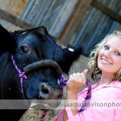 love showin cattle :)  now if only  i could take this good of a picture