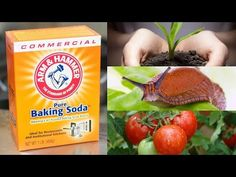 Who knew baking soda was so useful?