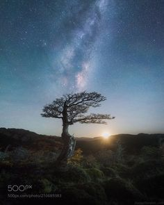 "Moonrise  Moonrise. Probably the most enchanting moment of the night. You could still see the milky way and already catch the ""moonburst"". I lit up this tree from right side to add a bit of volume to the tree. Join next year workshop in Patagonia at DanielKordan.com  Camera: NIKON D810  Don't forget to like the page or subscribe for more Milky Imagery! Image credit: http://ift.tt/2qB6JWA  #MilkyWay #Galaxy #Stars #Nightscape #Astrophotography #Astronomy"
