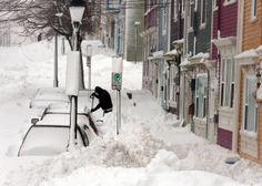 After snow storm in Newfoundland, Canada Newfoundland Canada, Newfoundland And Labrador, Canada Pictures, Terra Nova, Atlantic Canada, Winter Storm, Winter Time, Amsterdam City, New Brunswick