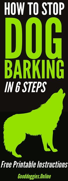 Learn how to stop dog barking in 6 easy steps. Includes tips on free printable download. #dogs #barking #dogtraining via @KaufmannsPuppy