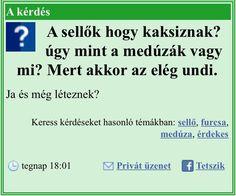 Hungary, I Laughed, Haha, Jokes, Funny, Google, Humor, Husky Jokes, Ha Ha