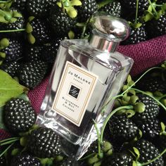 Jo Malone blackberry and bay cologne is sparkly, fruity, autumnal and very Jo Malone.  The lovely folks at JM sent over a bottle and in September there will be the body wash, candles and the body creme to enjoy too!  Layer it with Nectarine blossom and honey....