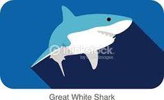 shark graphic design - Google zoeken