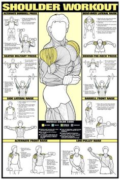 "Shoulder Workout 24"" X 36"" Laminated - Listing price: $24.95 Now: $21.95"