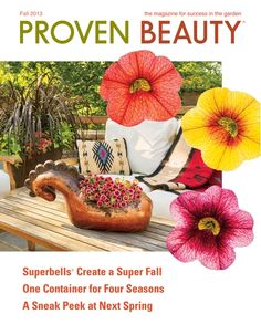 Proven Beauty - Fall 2013 - Page Cover