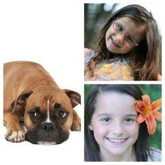 @Bratayley dog Annie,and Hayley