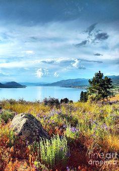 ✯ Okanagan Lake in the Spring - British Columbia. Landscape Photos, Landscape Photography, Nature Photography, O Canada, Canada Travel, Cool Landscapes, Beautiful Landscapes, British Columbia, Rocky Mountains