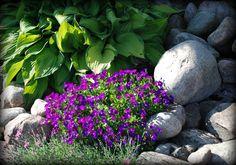Den vackraste tiden på året   Det är mellan hägg och syren   Då står hela naturen i blomning   Och spelar sin bästa scen   När s...