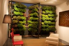 vertical gardens that can double as room dividers