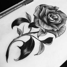 News - New Tattoo Models Rose Drawing Tattoo, Tattoo Design Drawings, Art Drawings Sketches Simple, Amazing Drawings, Pencil Art Drawings, Tattoo Sketches, Tattoo Designs, Tattoo Stencils, Tattoo Fonts