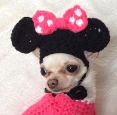 Minnie mouse inspired cute crochet dog hat