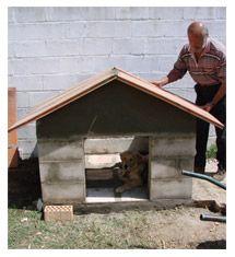 Hacer casa de perro con bloques de cemento casas de - Como hacer una casa de perro ...