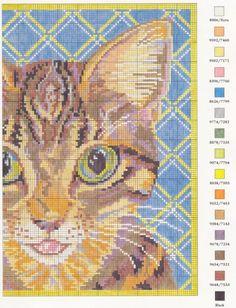 Gallery.ru / Фото #2 - CATS - KIM-2