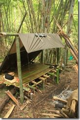 Make a lifted lean-to to camp in.