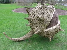willow art tom hare - Google Search