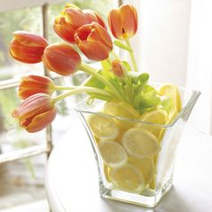 A Fresh Perspective!!!!!    container can be purchased for only $26.96 at http://southerninspiration.willowhouse.com