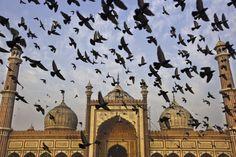 'Selfie' en el Taj Mahal, té en Darjeeling | Fotogalería | El Viajero | EL PAÍS