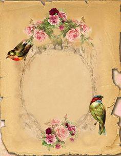 Vintage Flowers and Birds Frame Images Vintage, Vintage Diy, Vintage Labels, Vintage Ephemera, Vintage Frames, Vintage Cards, Vintage Paper, Vintage Postcards, Vintage Prints