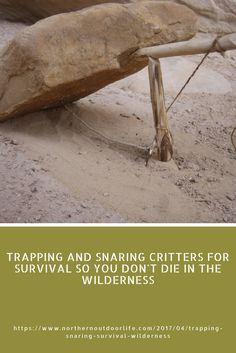 TRAPPING AND SNARING