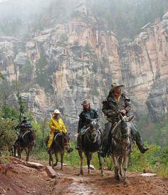 Mule Ride in North Rim Grand Canyon