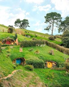 Read this to Relish In A Day Of Adventure: Hobbiton Day Tour, New Zealand Fairytale House, O Hobbit, New Zealand Travel, Fantasy Landscape, Day Tours, Amazing Nature, Destinations, Beautiful Landscapes, Adventure Travel
